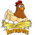 Noregrets Logo
